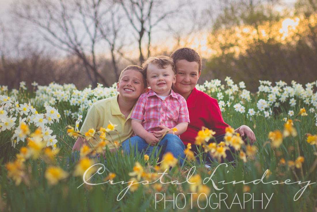 Crystal Lindsey Photography | St. Louis Portrait Photographer