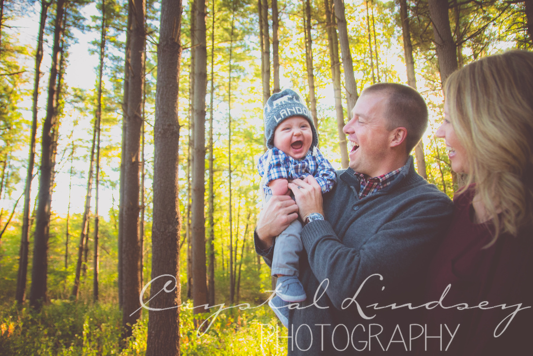 Family Photography in Tall Pine Trees